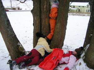 Strom neuhnul..........................................naštěstí to bylo jen naaranžováno. Děti byly naprosto v pořádku